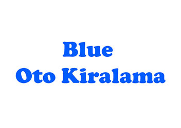 Blue Oto Kiralama Odunpazarı Şube